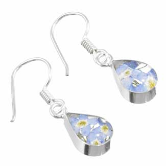 real flower forget me not silver earrings