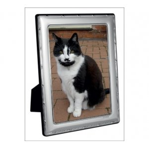 ribbon and reed pattern silver photo frame. 7 inch x 5 inch sight area